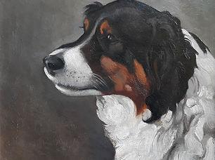 Pol Dom - Portret van een hond