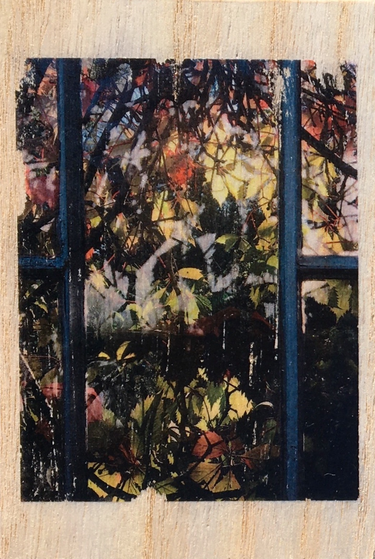 Untitled, 10x15cm