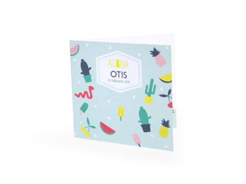 Miami Otis Geboortekaartje