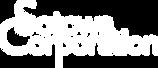logo (1)a.png