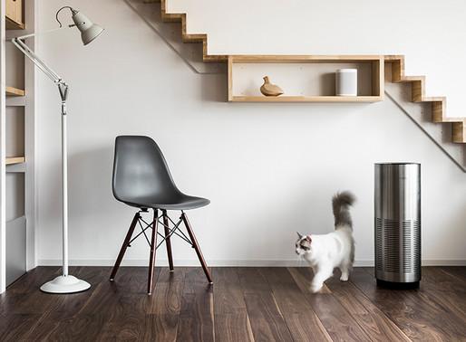 【HINT】猫ちゃんにやさしい床 -NEKOFLOOR-