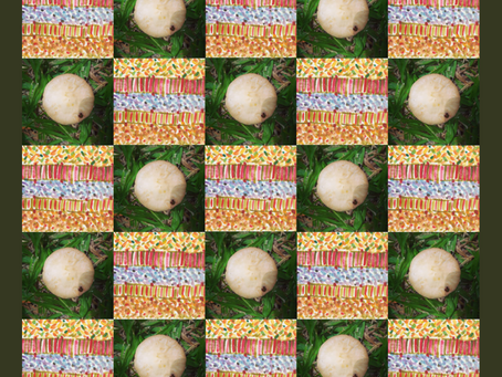 Mushroom Craze I - Lockdown Series