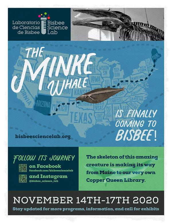MINKE WHALE CAMPAIGN-web poster.jpg