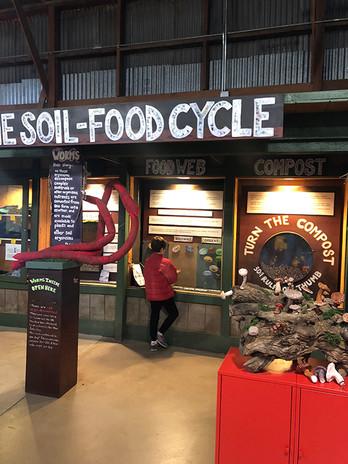 BSL - food cycle.jpg