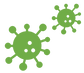 Virus Clipart Green.png
