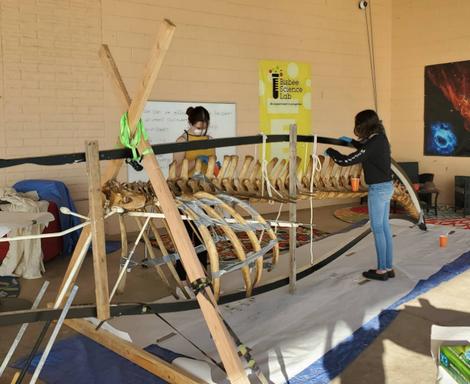 Minke Whale Installation