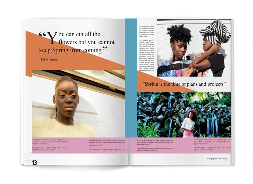 Fashion article layout