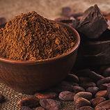 Cocoa powder.jpg