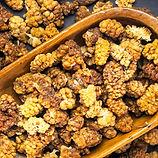 mulberry-dried.jpg