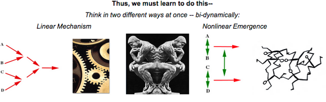 2thinker-lin-non.png
