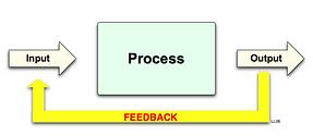 feedbackLiner copy.png