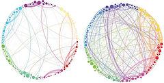 networkAsNodeCircles.jpg
