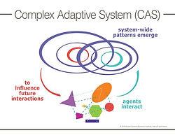 complex-adaptive-system.jpg