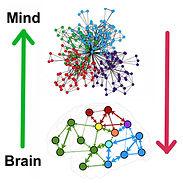 BraintoMindnets.jpg