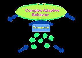 CAS-diagram-UP-Date copy.png