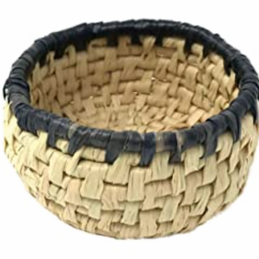 Coiled Raffia Basket Weaving Class