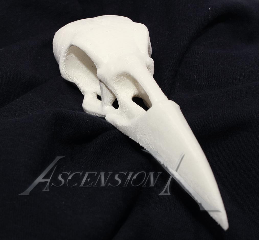 Crâne de corbeau (TPU)