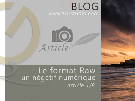 Le format Raw. Introduction