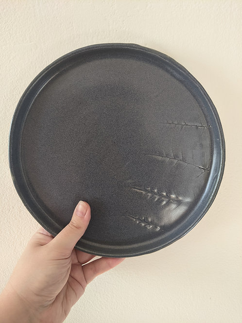 Plate No. 8