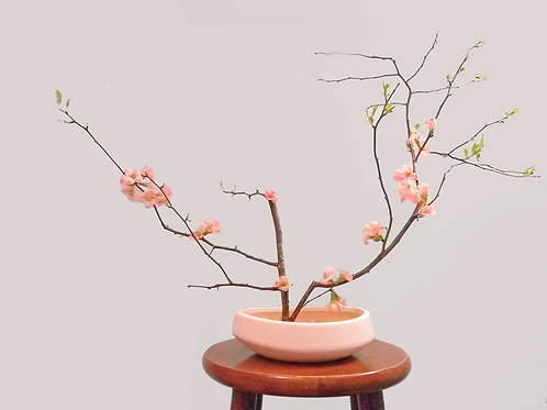 Flower Arrangement: Ikebana (8/14)