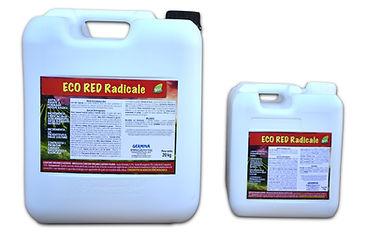 ECO RED RADICALE.jpg