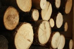 houtblokken-142825.jpg