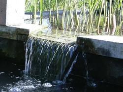 Vijver waterstroom
