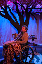 Tuesday's with Morrie - Crane River Theater