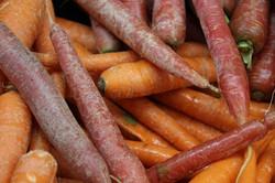 Produce_carrots_IMG_4198
