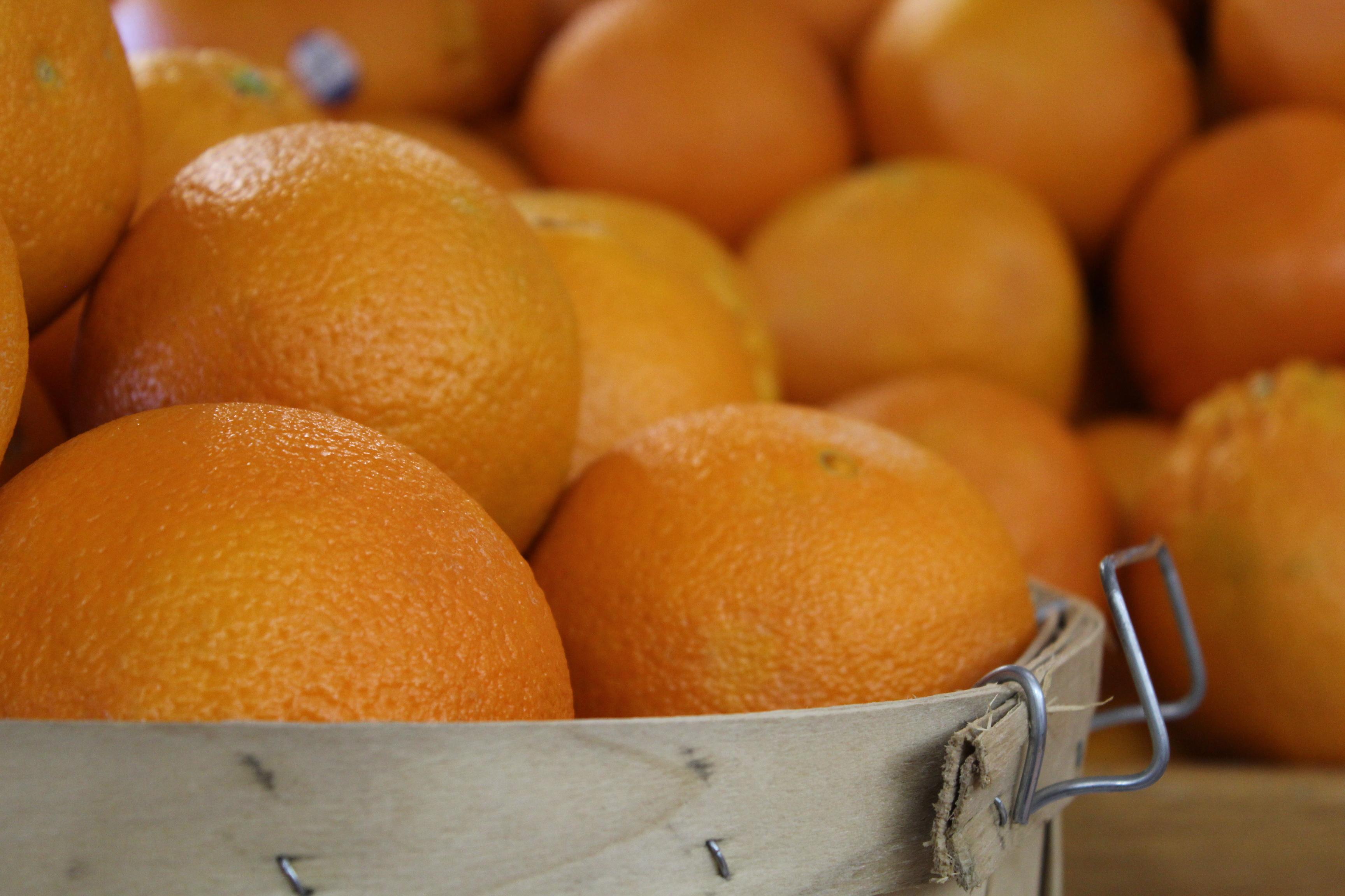 Produce_oranges_IMG_4182