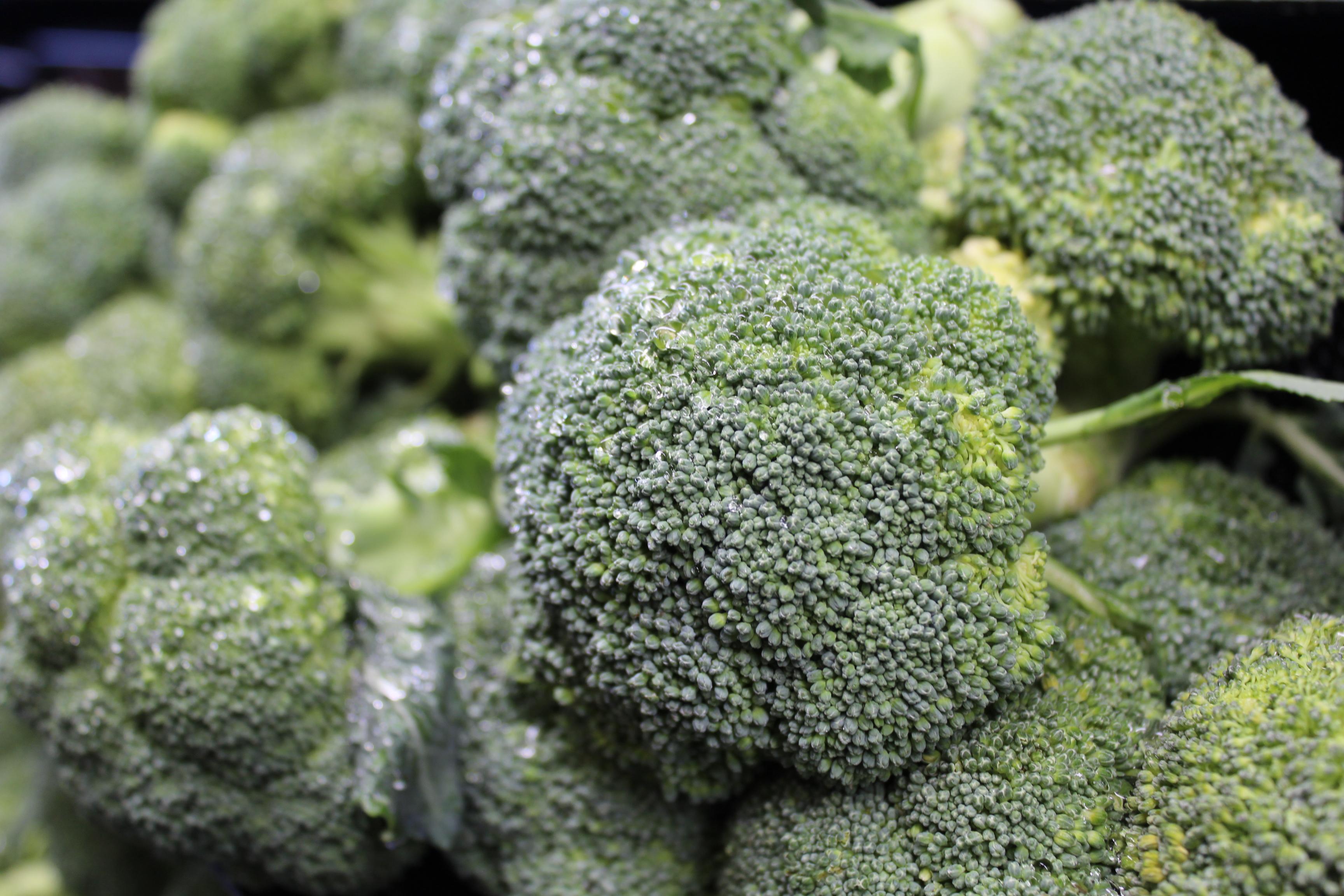 Produce_broccoli_IMG_4204