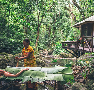 Koro Rainforest.jpeg