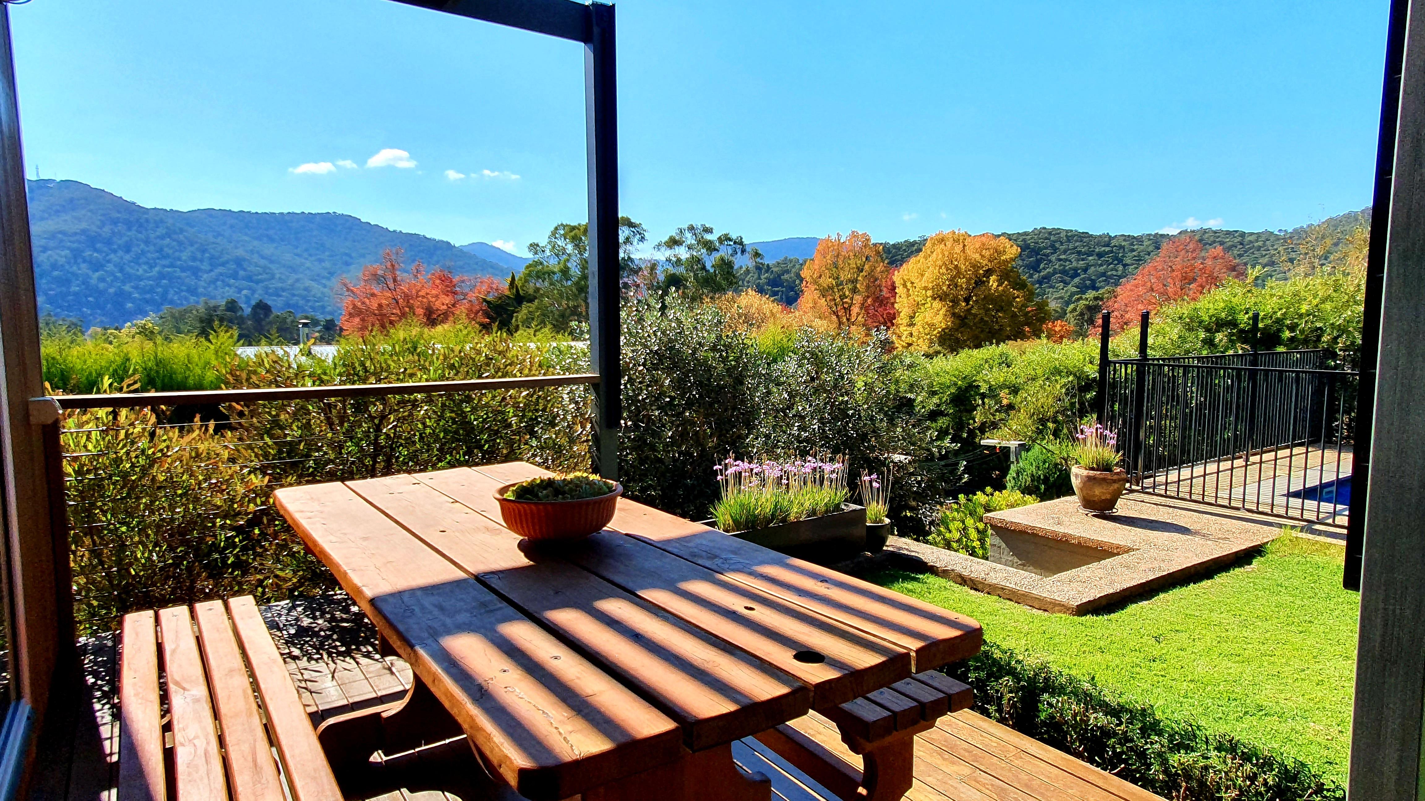 2021 autumn garden view