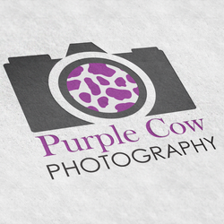 Purple Cow Logo Idea