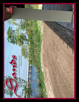 2020-07-Sands.jpg