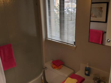 Upstairs Courtyard Bathroom