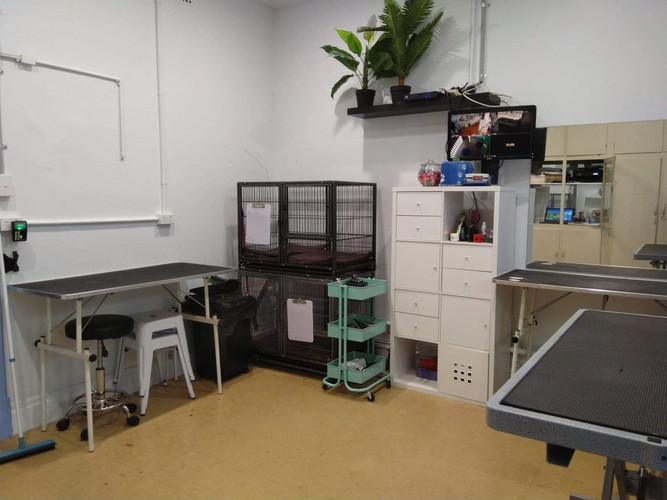 Our Grooming Room