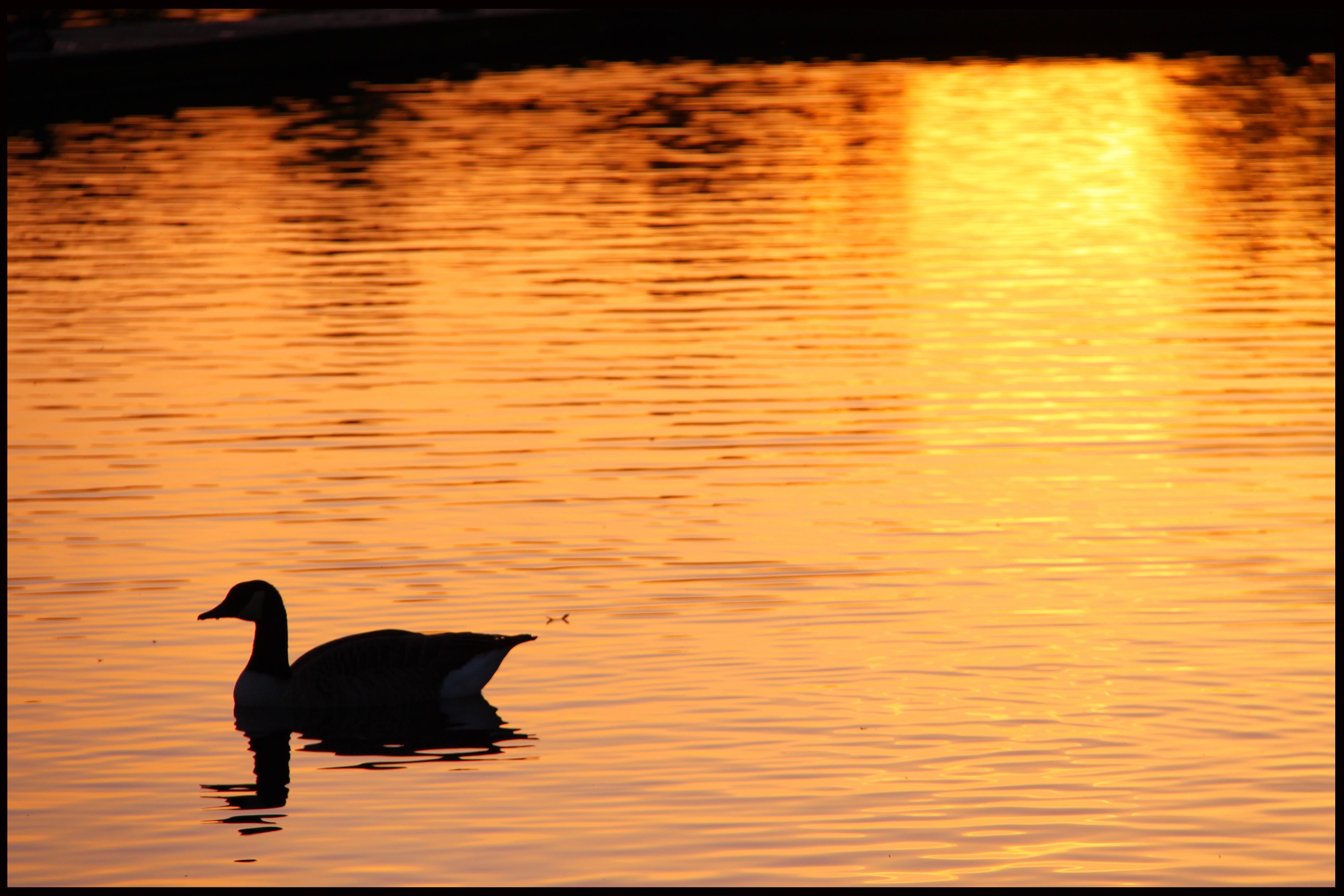 Danson Lake
