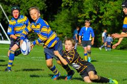 Junior Rugby Tournament