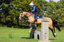 equestrian photography bexley