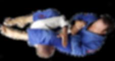 Brazilian Jiu-Jitsu Armbar