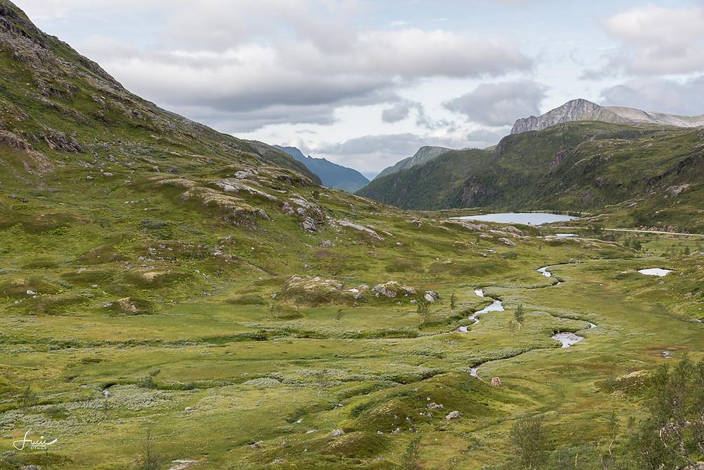 Avant d'arriver au parc national Anderalen, à Senja