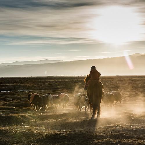 Mongolie, Altaï