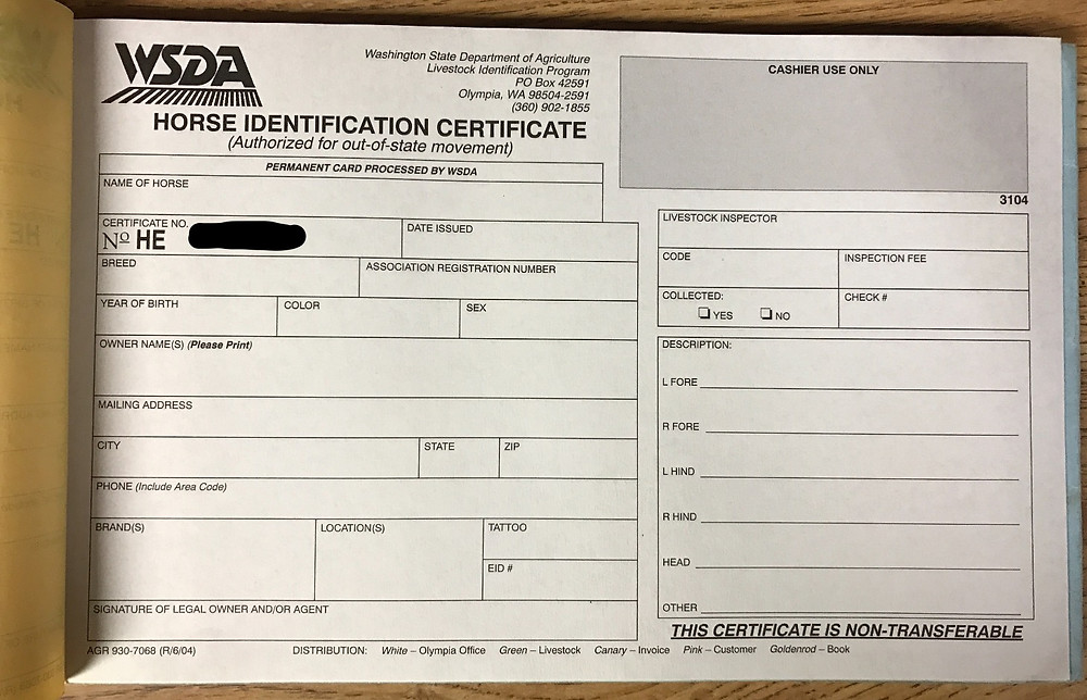 Horse Identification Certificate