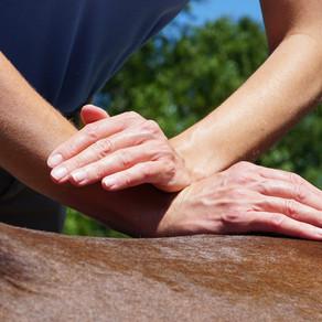 Chiropractic: An Integrative Approach