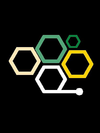 Hexagons2.png