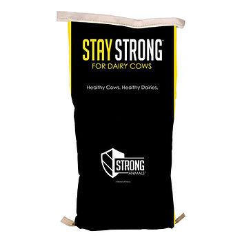 Dairy_StayStrongDairyCows