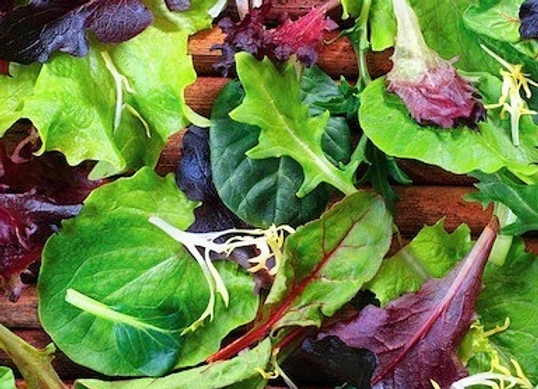 The Taproots Salad