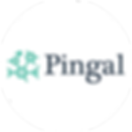 Pingal Technologies