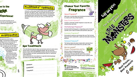 Little Monsters Pet Shop graphic design, flyer and window graphics
